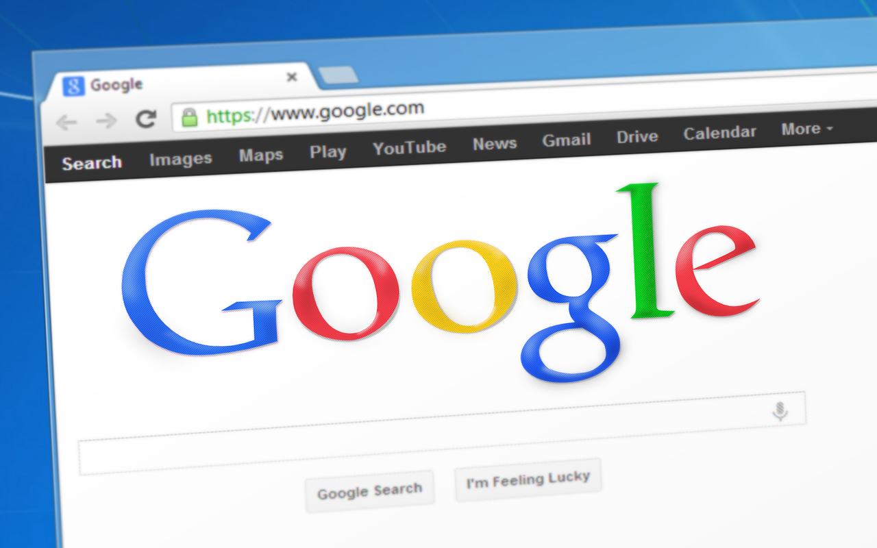 image of google search